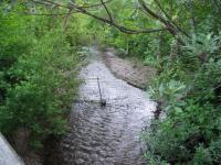 link to image cottaneva_creek_upstream_img_0921.jpg