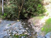 link to image deer_creek_downstream_39_70879__123_65134_img_1056.jpg