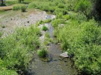 link to image lhit7ankwot_downstream_39_73947__123_51478_img_1010.jpg